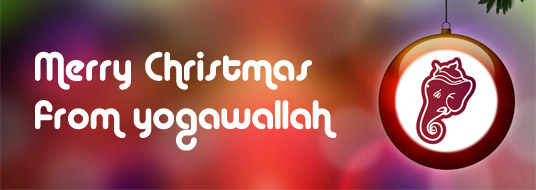 Merry Christmas from yogawallah